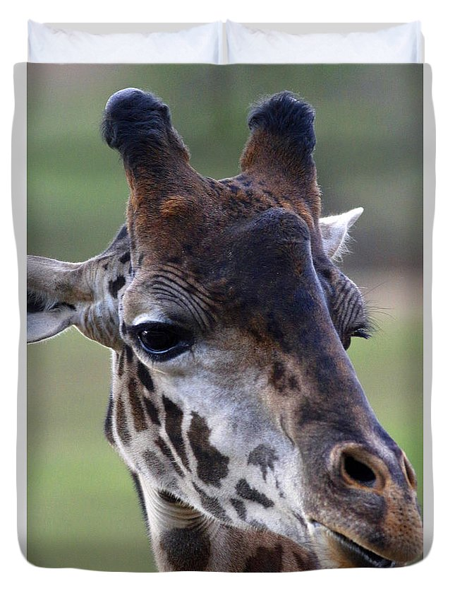 Safari Duvet Cover featuring the photograph Giraffe by Debbie Parker