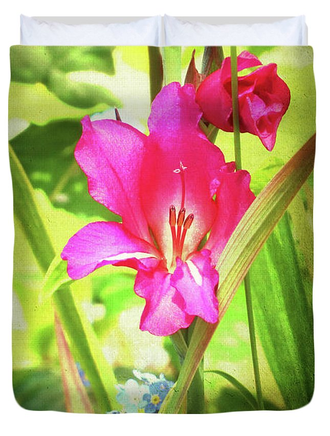 Flower Duvet Cover featuring the photograph Gladioli Byzantinus Textured by Terri Waters