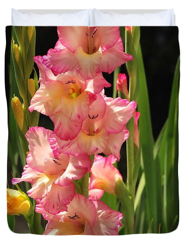 Gladiolus Duvet Cover featuring the photograph Gladiolus by Michelle DiGuardi