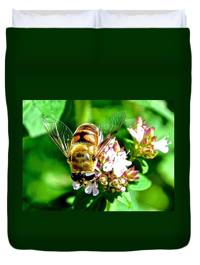 Bee Duvet Cover featuring the photograph Glass Wings by Danielle Sigmon