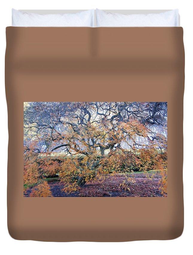 Photography Duvet Cover featuring the photograph Glen Park Manor Garden by Steven Natanson
