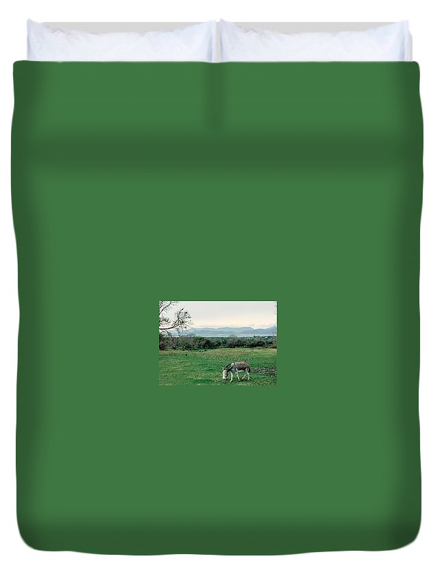 Ireland Duvet Cover featuring the photograph Glenbeigh Ireland by Lauri Novak