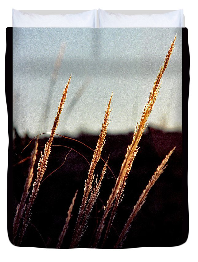 Grass Duvet Cover featuring the photograph Glistening Grass by Randy Oberg