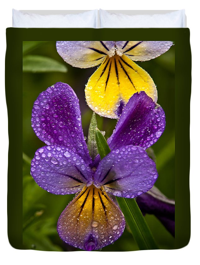 Wildflowers Duvet Cover featuring the photograph Glittered Wild Pansies by Irwin Barrett