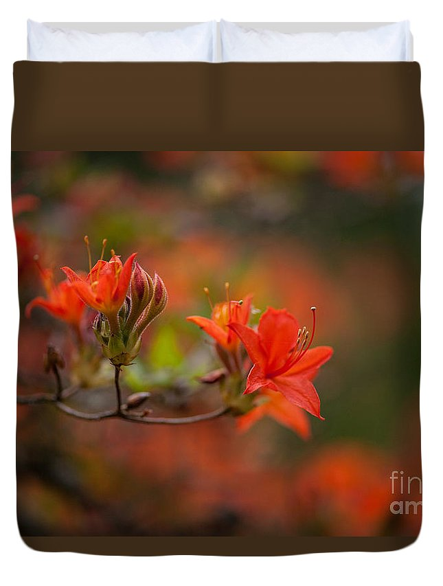 Rhodies Duvet Cover featuring the photograph Glorious Blooms by Mike Reid