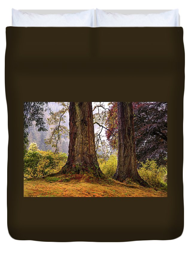 Landscape Duvet Cover featuring the photograph Glorious Fall In Benmore Botanical Garden. Scotland by Jenny Rainbow