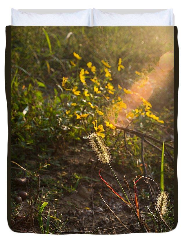 Kentucky Duvet Cover featuring the photograph Glorious Foxtail by Douglas Barnett