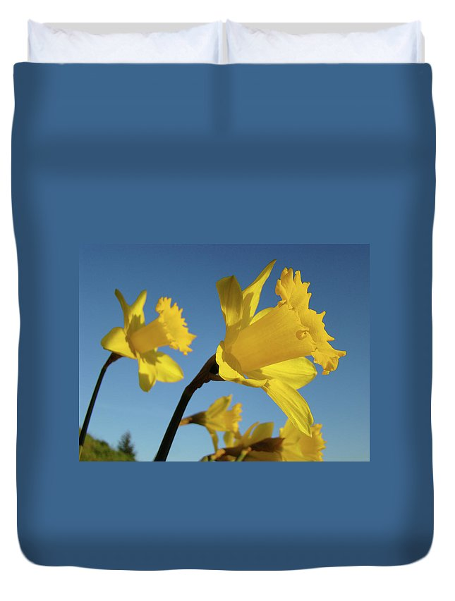 Spring Duvet Cover featuring the photograph Glowing Daffodil Flowers Floral Art Baslee Troutman by Baslee Troutman
