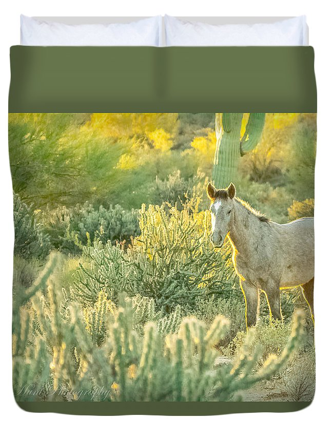 Salt River Wild Horses Duvet Cover featuring the photograph Glowing In The Wild by Ronald Hunt