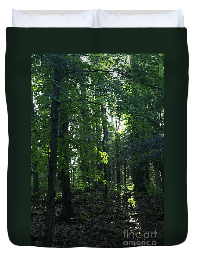 Woods Duvet Cover featuring the photograph Go Into Your Dream by Linda Shafer
