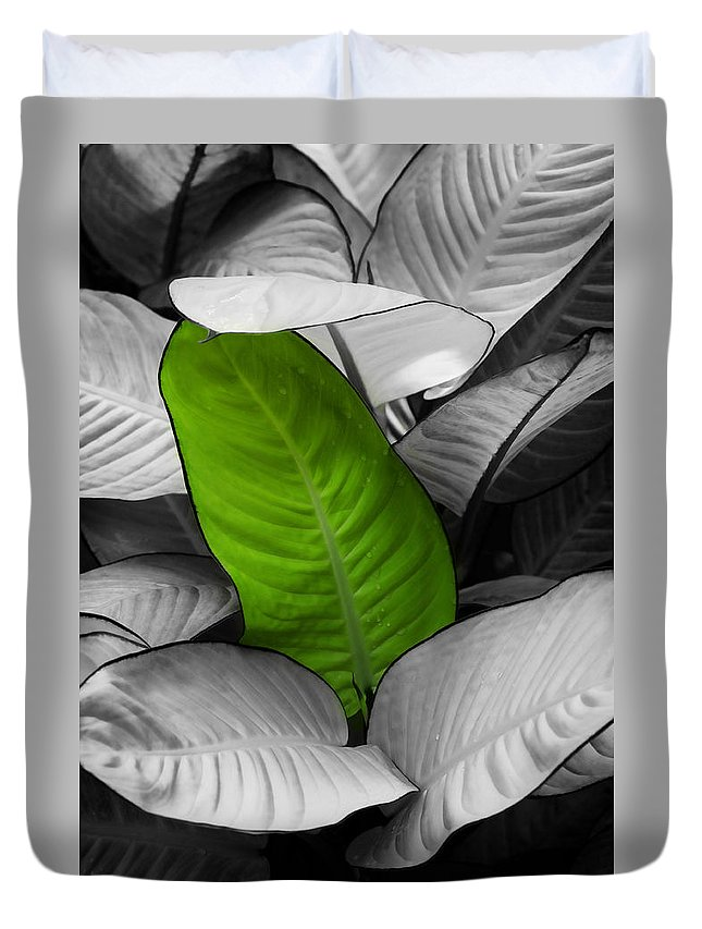 Leaf Duvet Cover featuring the photograph Going Green - Dreamy by Marilyn Hunt