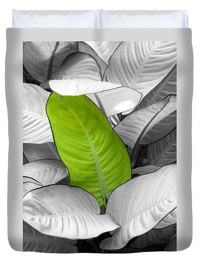 Leaf Duvet Cover featuring the photograph Going Green Lighter by Marilyn Hunt