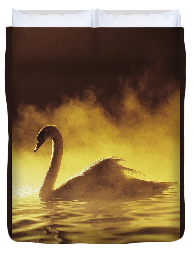 African Duvet Cover featuring the photograph Golden African Swan by Brent Black - Printscapes