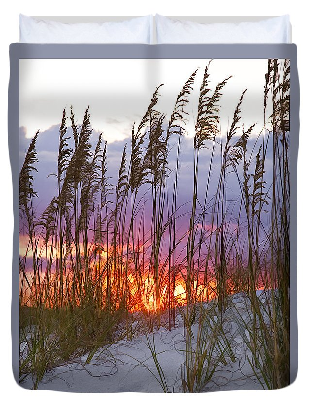 Sea Oats Duvet Cover featuring the photograph Golden Amber by Janet Fikar