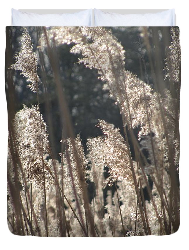 Golden Brown Grass Photographs Canvas Prints Reeds Nuetral Colors Landscape Winter Wetland Images Winter Marsh Photo Prints Maryland Cheasapeake Tributary Duvet Cover featuring the photograph Golden Brown by Joshua Bales