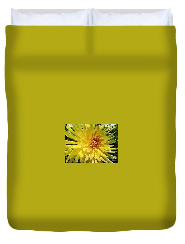 Dahlias Duvet Cover featuring the photograph Golden Dahlia Beauty by Jane Powell