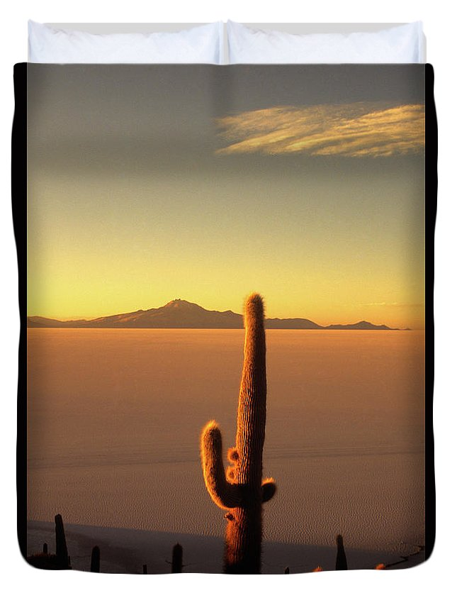 Salar De Uyuni Duvet Cover featuring the photograph Golden Cactus Sunset by James Brunker