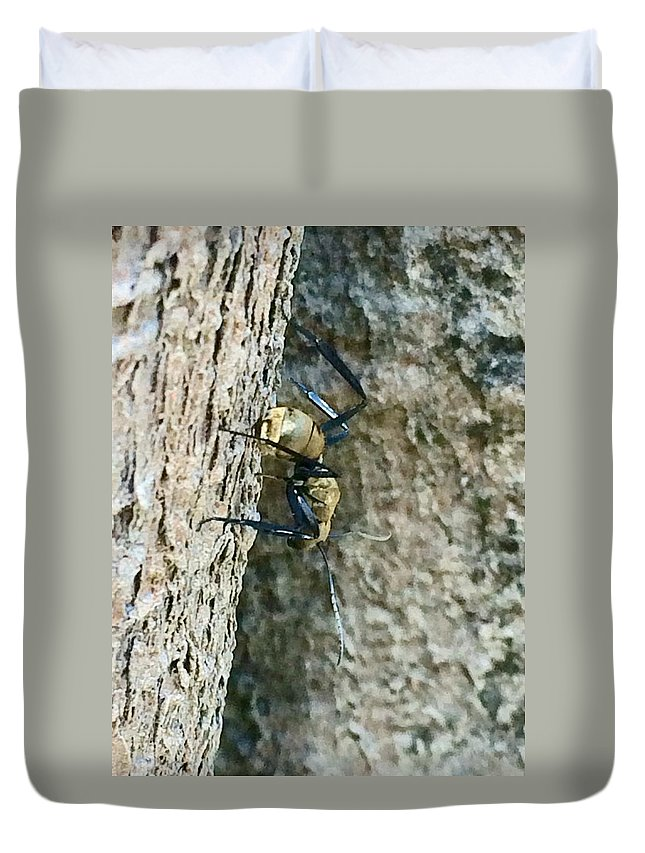 Ant Duvet Cover featuring the photograph Golden Carpenter Ant by Natalia Wallwork