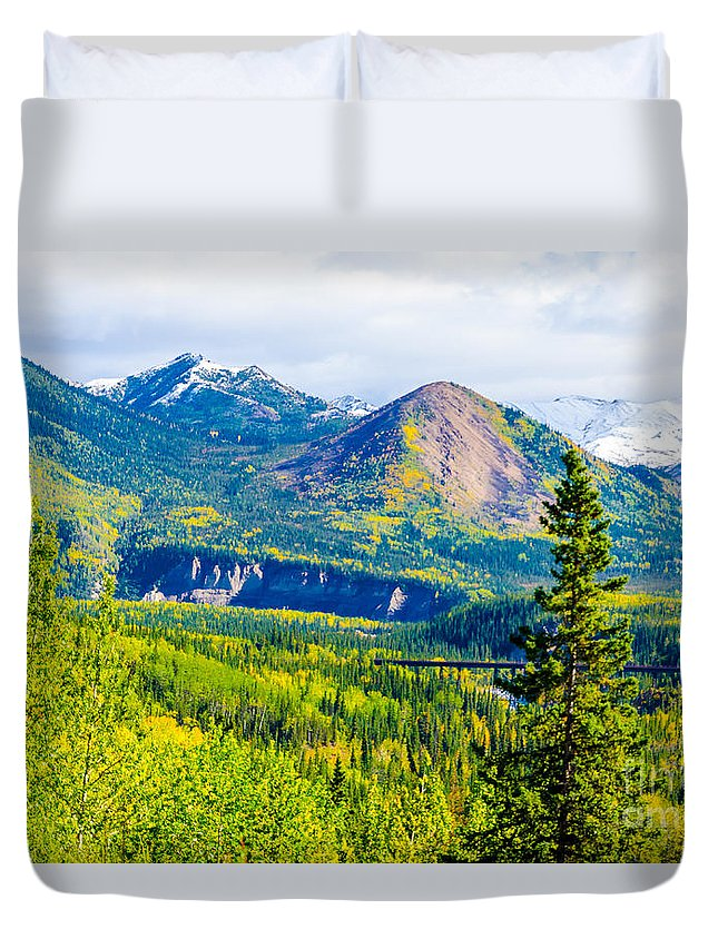 2015 Duvet Cover featuring the photograph Golden Denali by Mary Carol Story