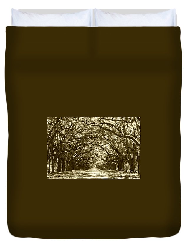 Live Oaks Duvet Cover featuring the photograph Golden Dream World by Carol Groenen