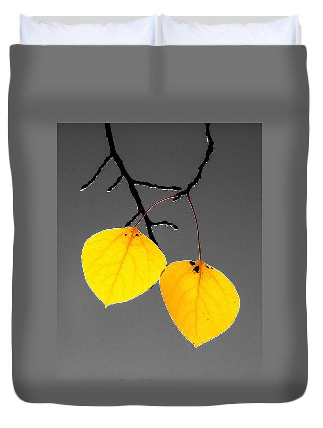Quaking Duvet Cover featuring the photograph Golden Duo by LeAnne Perry