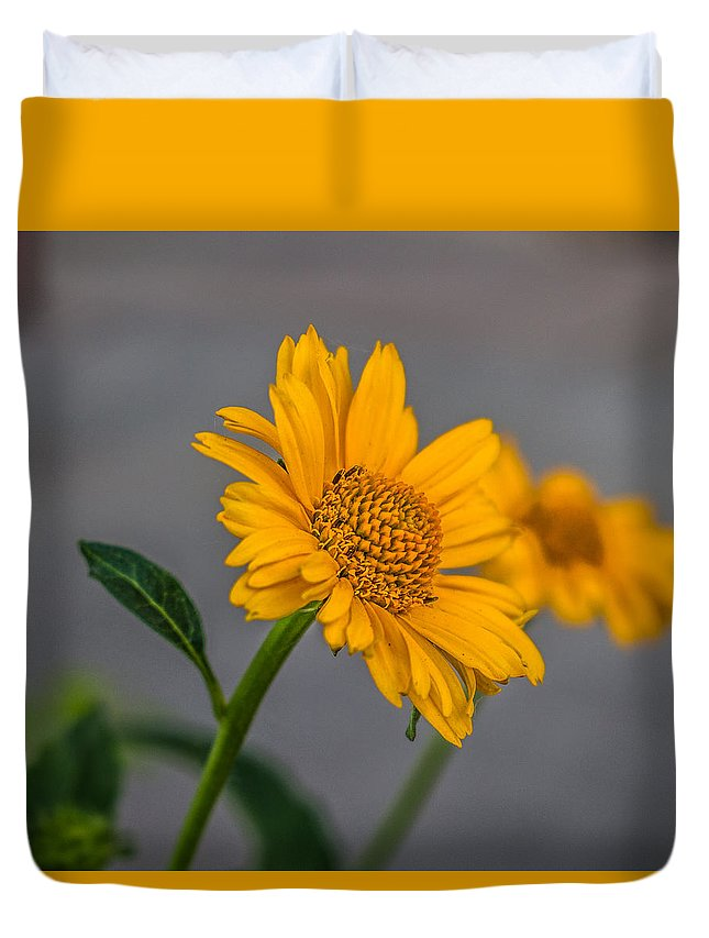 Flowers Duvet Cover featuring the photograph Golden Flower II by Tammy Bryant