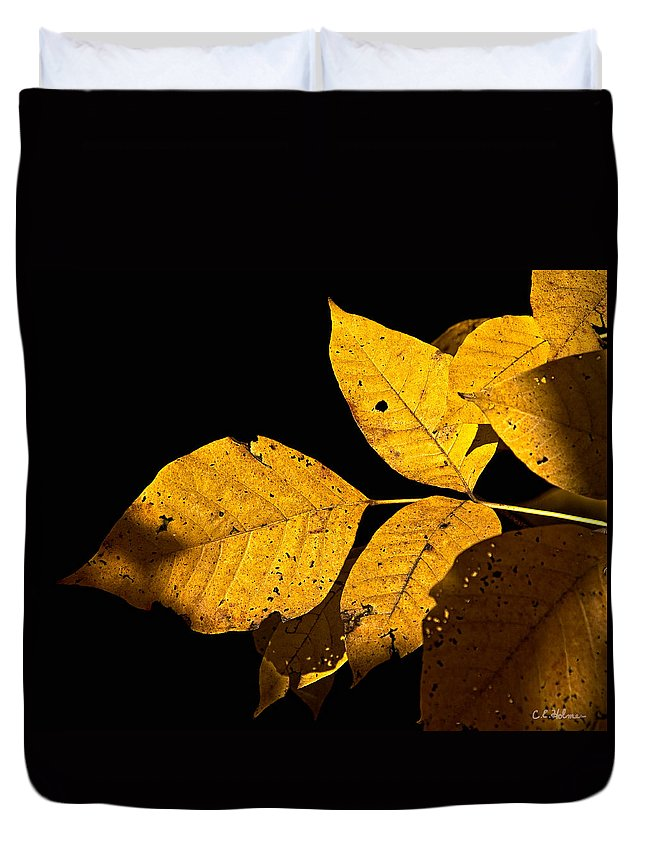 Gold Duvet Cover featuring the photograph Golden Glow by Christopher Holmes