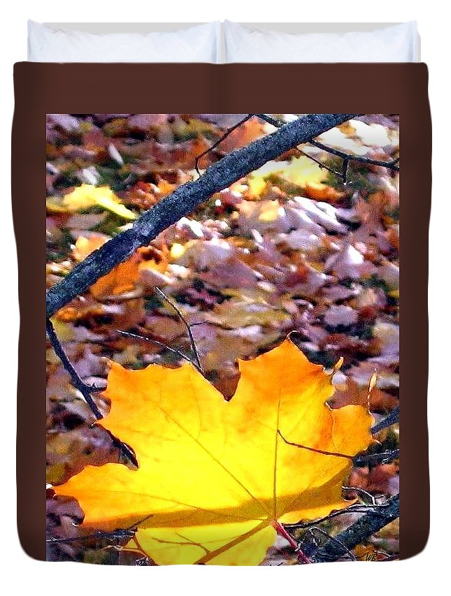 Maple Leaf Duvet Cover featuring the photograph Golden Leaf by Will Borden