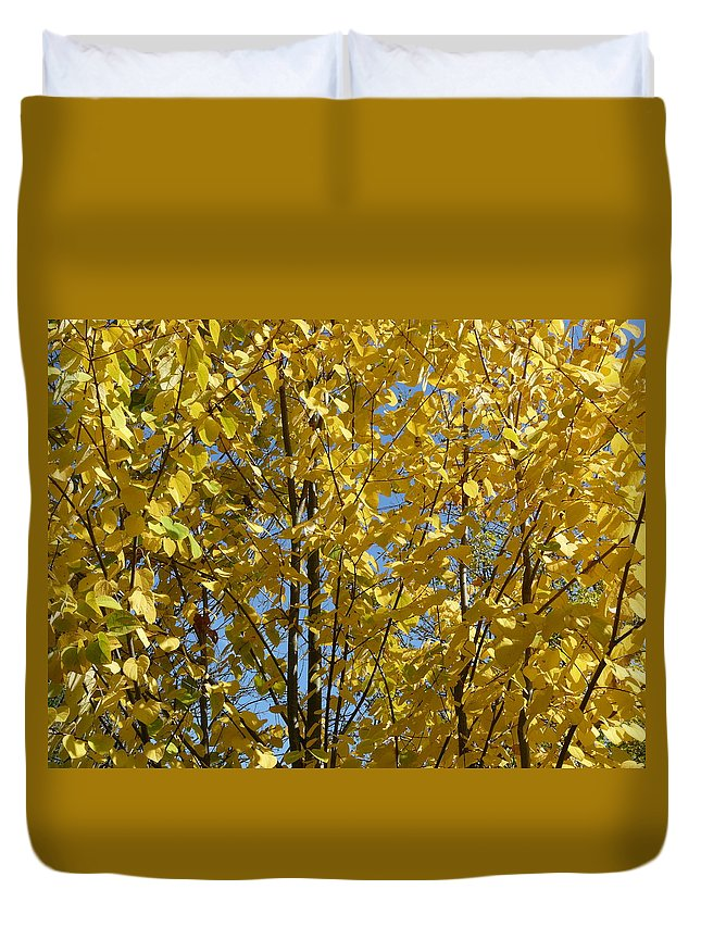October Duvet Cover featuring the photograph Golden October by Valerie Ornstein