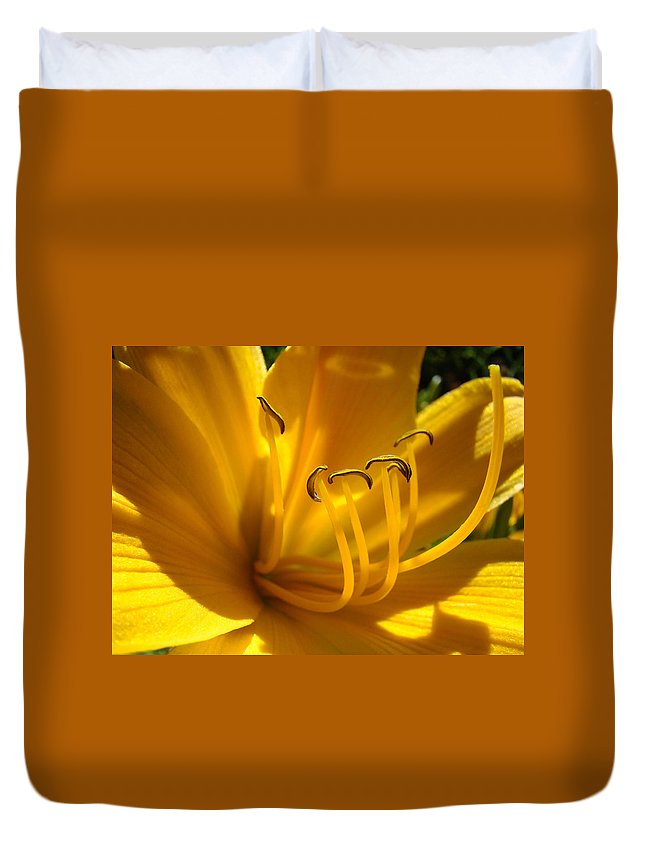 Lilies Duvet Cover featuring the photograph Golden Orange Lily Art Print Lilies Flowers Baslee Troutman by Baslee Troutman