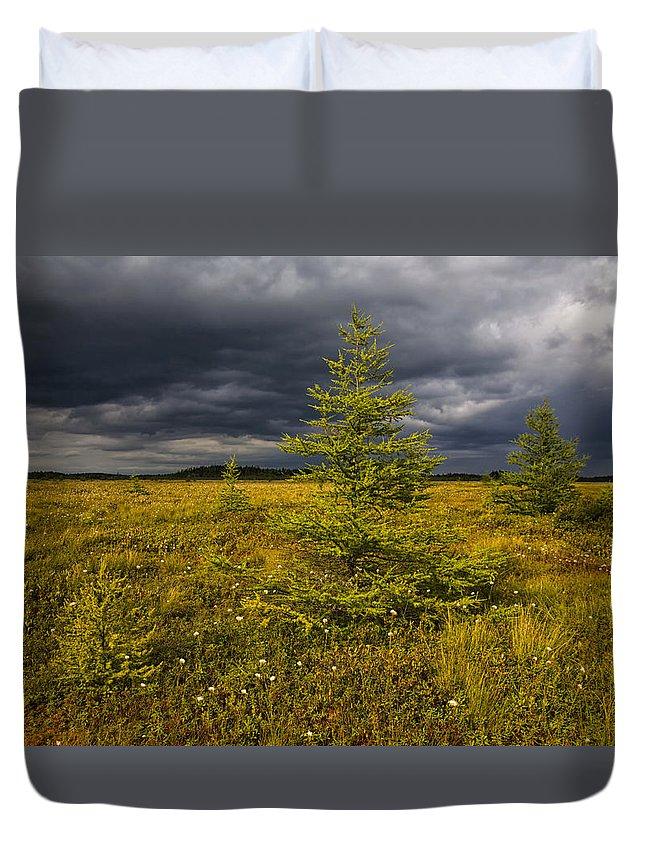 Storm Clouds Duvet Cover featuring the photograph Golden Plains by Irwin Barrett