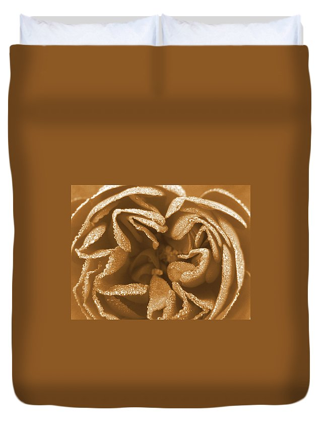 Rose Duvet Cover featuring the photograph Golden Rose by Amy Fose