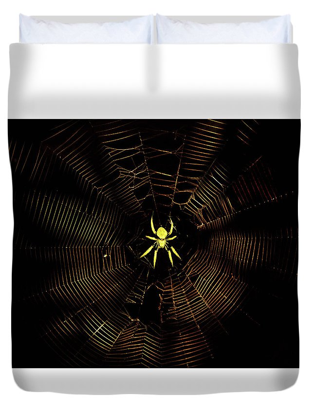Spider Duvet Cover featuring the photograph Golden Silk by Mark Andrew Thomas