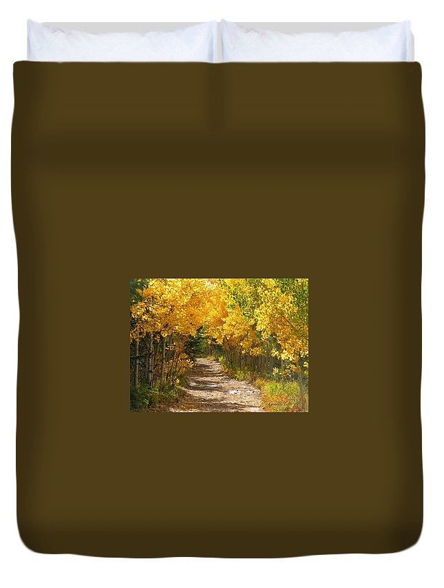 Fall Autumn Walk Path Hike Aspen Rocky Mountains Goldhill Sunny Duvet Cover featuring the photograph Golden Tunnel by George Tuffy