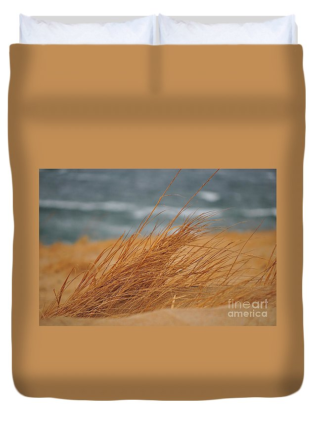Beach Duvet Cover featuring the photograph Golden View by Catherine Reusch Daley