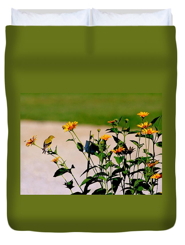 Goldfinch Duvet Cover featuring the photograph Goldfinch And Yellow Flowers by Darla Wells