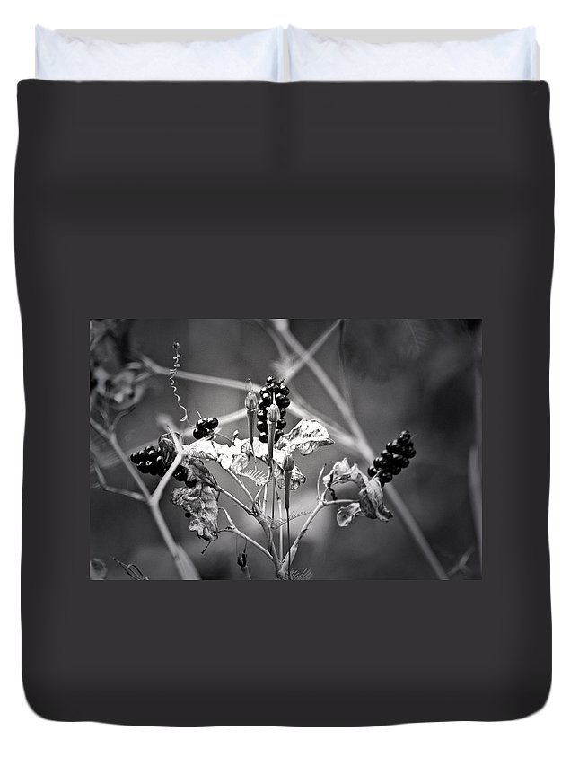 Flower Duvet Cover featuring the photograph Gone To Seed Berries And Vines by Teresa Mucha