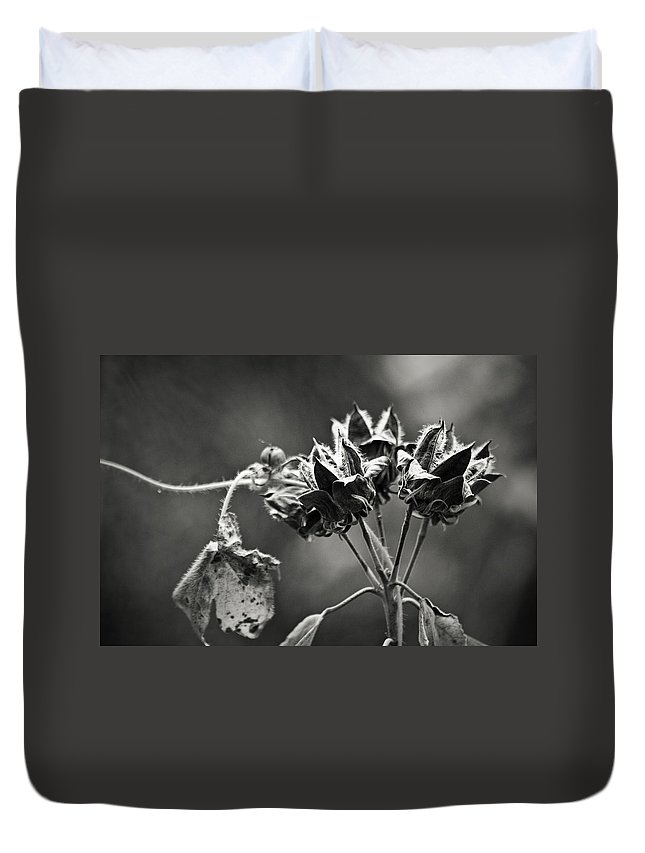 Flower Duvet Cover featuring the photograph Gone To Seed Hibiscus by Teresa Mucha