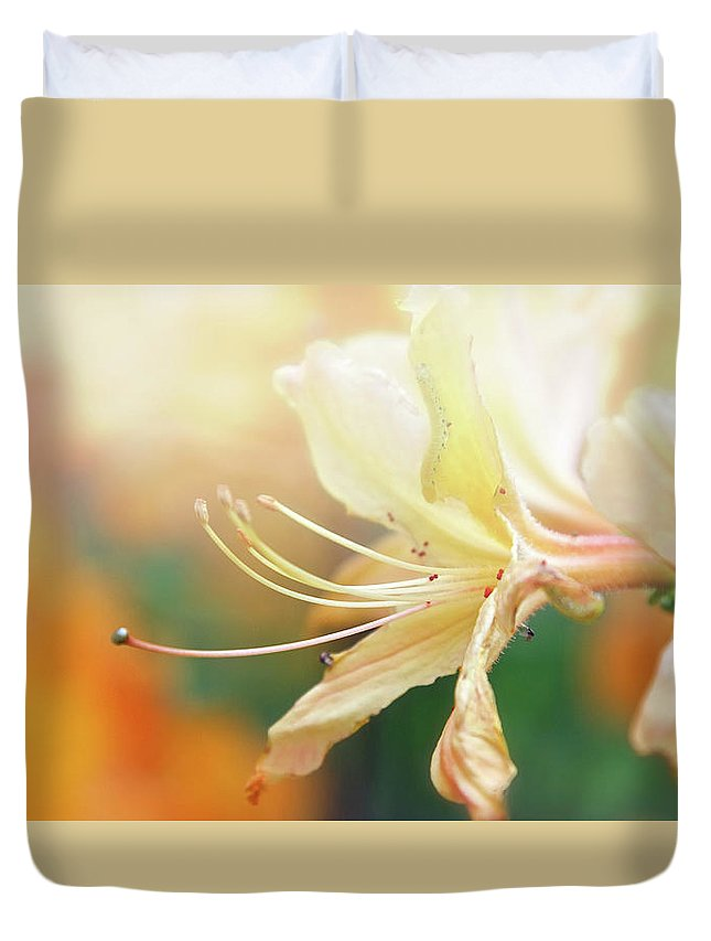 Flower Duvet Cover featuring the photograph Good Morning Starshine by Jpc Pix