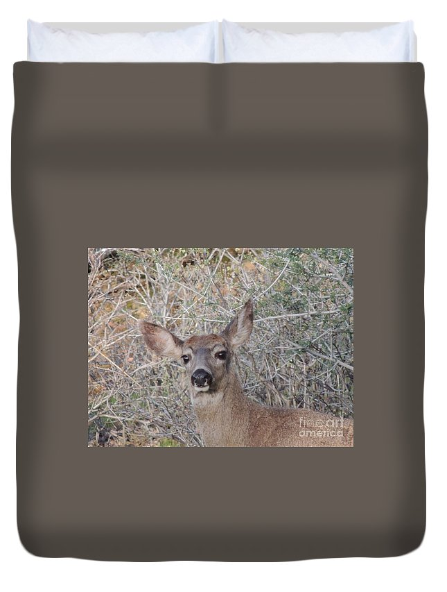 Wildlife Duvet Cover featuring the photograph Good Morning by Traci Hallstrom