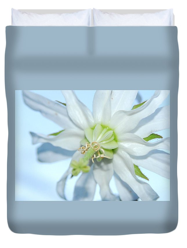 Flower Duvet Cover featuring the photograph Good Morning World by Jessica Wallace