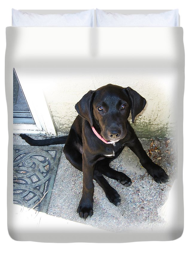 Dog Duvet Cover featuring the photograph Good Puppy by Rhonda Chase