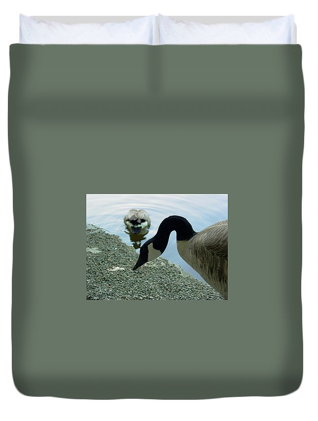 Goose Duvet Cover featuring the photograph Goose Neck by Sara Stevenson