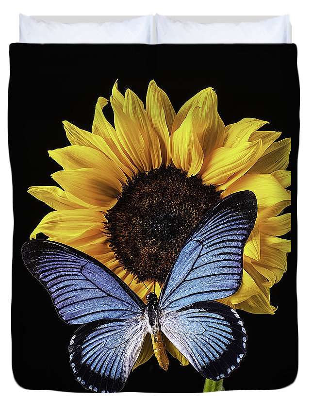 Vertical Duvet Cover featuring the photograph Gorgeous Blue Butterfly by Garry Gay