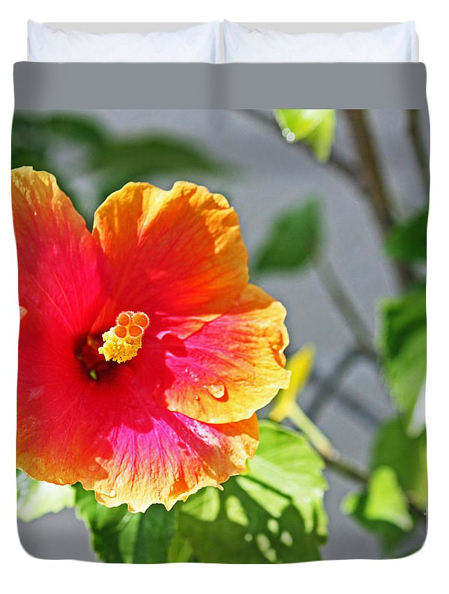 Flower Duvet Cover featuring the photograph Gorgeous Hibiscus by Terri Mills