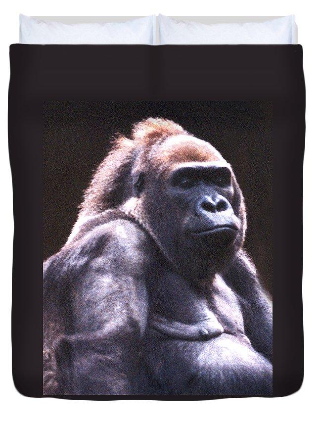 Gorilla Duvet Cover featuring the photograph Gorilla by Steve Karol