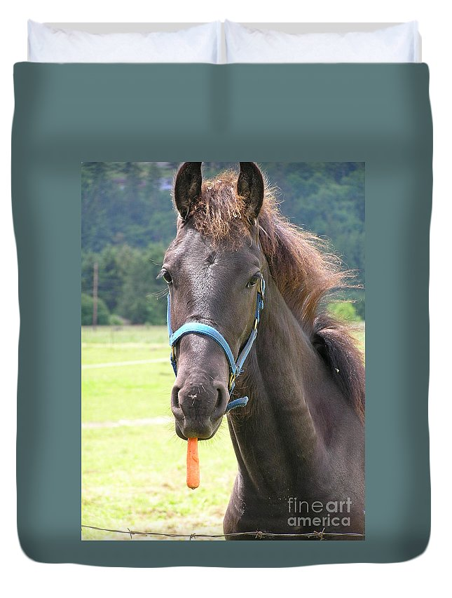 Friesian Duvet Cover featuring the photograph Got Carrots by Louise Magno