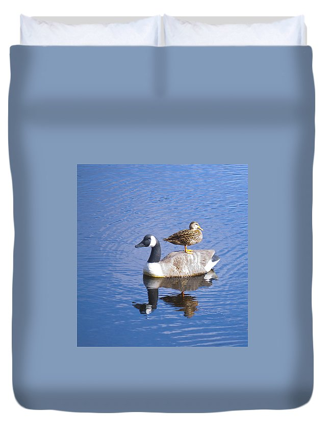 Bird Duvet Cover featuring the photograph Got Your Back by Donna Walsh