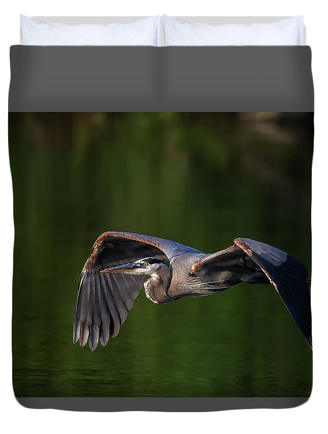 Great Duvet Cover featuring the photograph Graceful Flight by Everet Regal