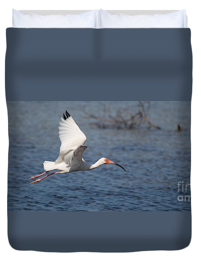 Ibis Duvet Cover featuring the photograph Graceful Spirit By Darrell Hutto by J Darrell Hutto